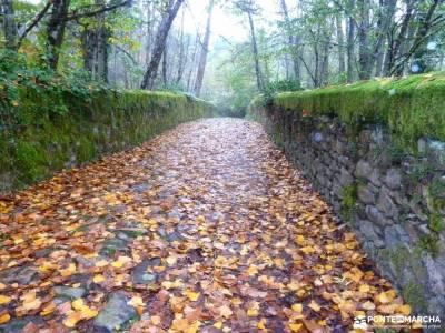 Sierra de Francia [Fiesta de la Almudena] singles vacaciones viajes organizados a madrid senderismo